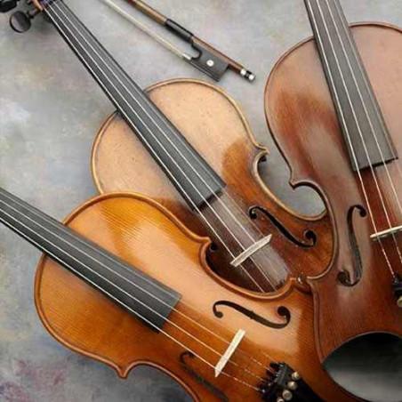 Trio de cuerdas para bodas cumpleaños y fiestas