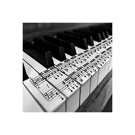 Pianistas de teclado