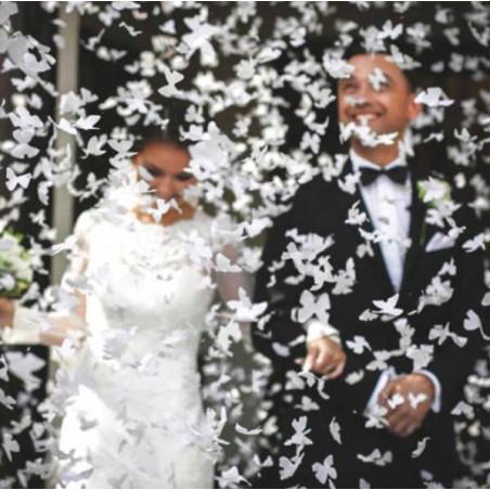 Cañon confeti mariposas blancas 60cm